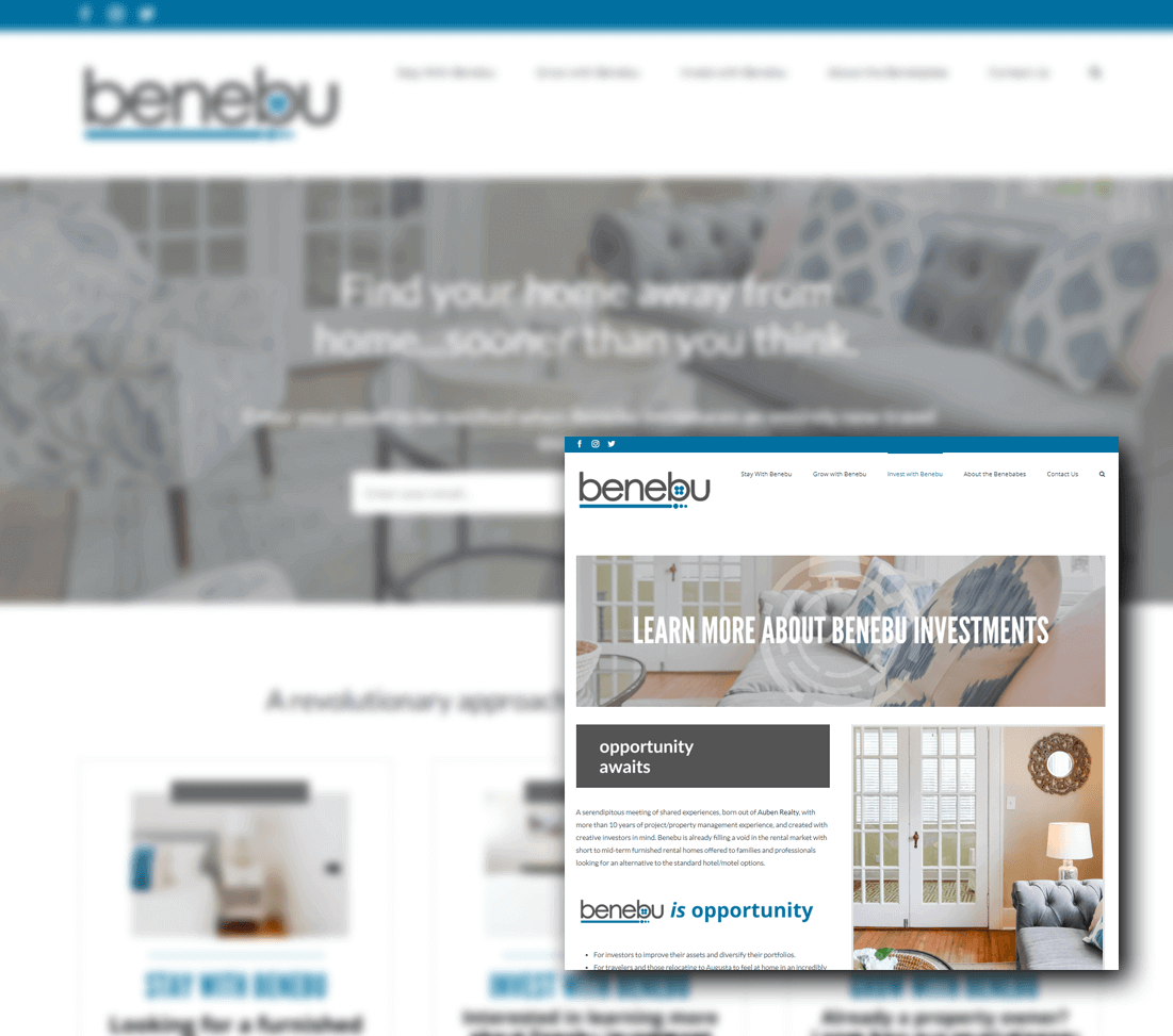 Benebu Website Design