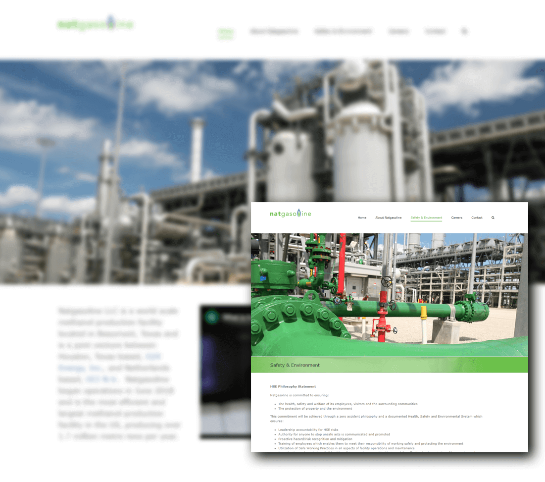 Natgasoline Website Design